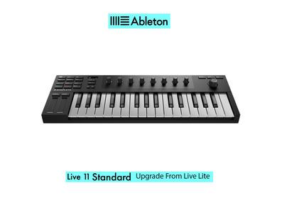 Native Instruments Komplete Kontrol M32 w/ Live 11 Standard UPG from Live Lite