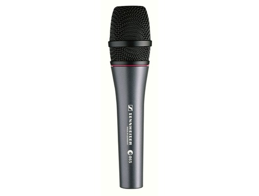 Sennheiser e865 Supercardioid Vocal Condenser Microphone
